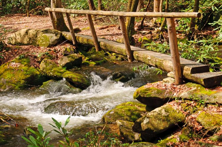 footbridge-over-stream-in-Great-Smoky-Mountains-National-Park.jpg.aspx