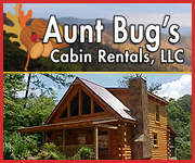Pigeon Forge Aunt Bug's Cabin Rentals