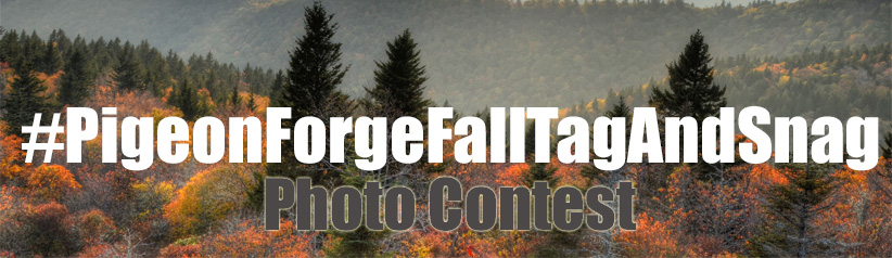 Pigeon Forge Photo Contest