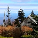 Mt. Leconte Hike to the lodge