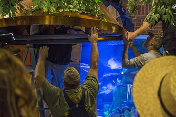 Animal Planet's Tanked in Pigeon Forge